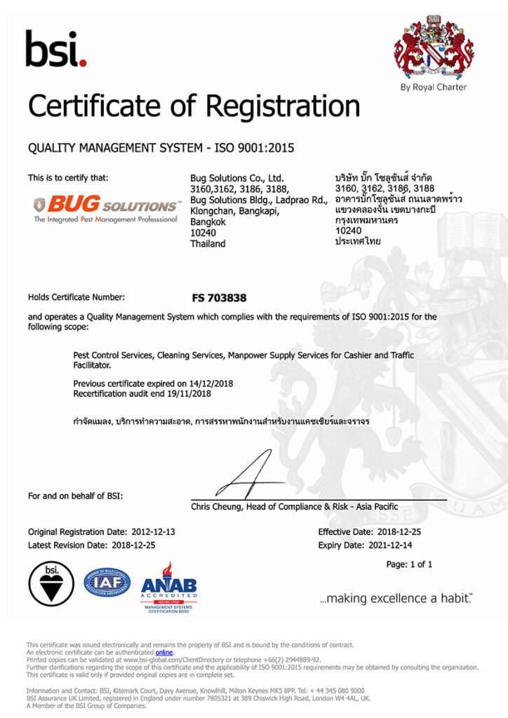 bugsolutions Certificate iso 9001